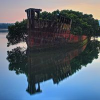 The Good Ship Mangrove by Sun-Seeker