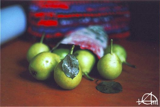 pears by grezelle