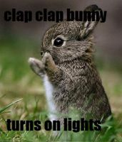 Clap Clap Rabbit by JumpinWombango