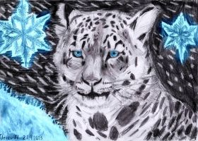 Snow leopard by Jerzu97