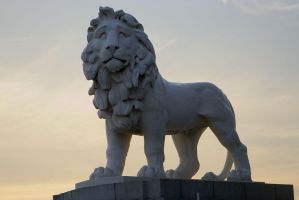 South Bank Lion London by NMRosario