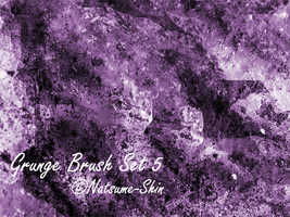 Grunge Brushes Set 5+ by Natsume-Shin