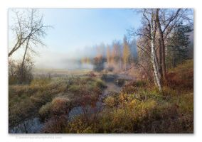 Morning Fog by kootenayphotos