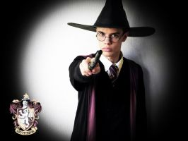 Harry Potter Cosplay by Peterrrrrr