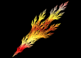Fire Feather by Juggalo5