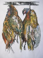 Hanging Pheasants (draft) by georginajane