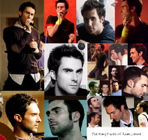 Adam collage by maroon5Fans