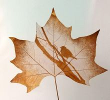 Leaf engraving by LeafEngraving