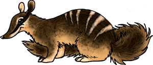 Another Numbat by rheall