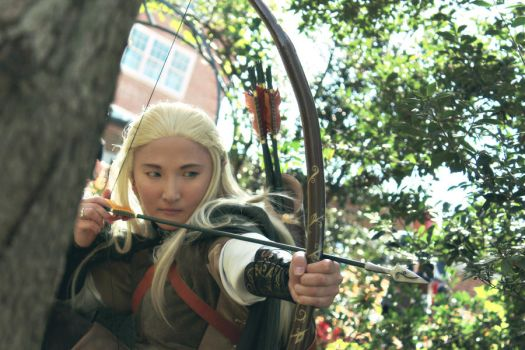 LoTR: Legolas 1 by Stealthos-Aurion