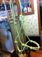 Custom Rope Halters For Sale by Rising-High-Ranch