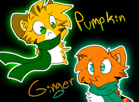 Pumpkin and Ginger by StarMapleStar
