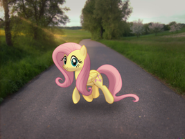 Just Crossing the road [PIRL] by colorfulBrony