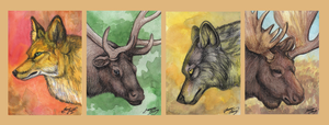 Forest Animal ACEO's by MorRokko