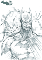 75 YEARS OF BATMAN by DRAKEFORD