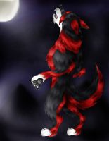 Moonlight by WolvenFlames by ArtOfThePawAndFang