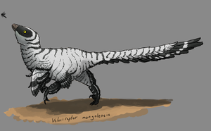 Velociraptor mongolensis by Thobewill