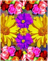 Floral Patterns by Checkmate333