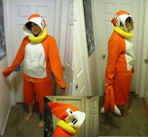 Buizel Cosplay by Chochomaru