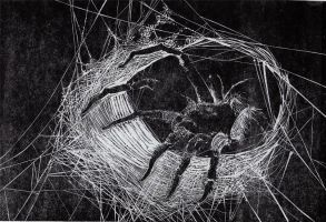 Linocut Spider by TeaLabel