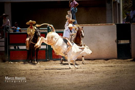 Rodeo by Avatarmar