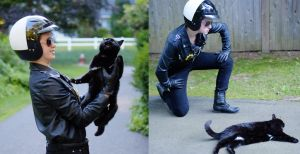 No Cats for Bad Cop by SaltAndPuff