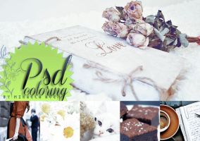 PSD coloring HD full colors + 33 by alma-mora