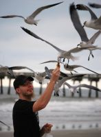 Feeding the Gulls by jennalynnrichards