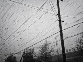 SNOW by baifengxi
