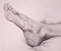 Foot study by sharthenightwisp