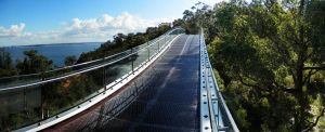 King's Park Treetop walkway by Chihito