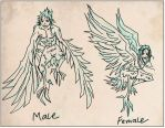 Male + Female Stormwings by SeiraSky