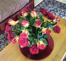 20 Roses by Rozrr