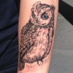 Mugen The Left Arm Owl by Forever-A-Daydreamer