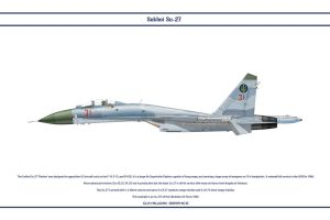 Su-27 Ukraine 3 by WS-Clave