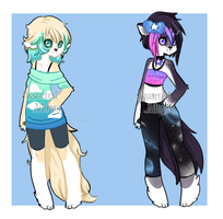 Adopts (1/2)(OPEN) by Assorted-Adopts
