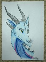 Traditional head shot commission for Arascane by StanHoneyThief