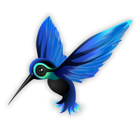 Hummingbird Logo by anexemines
