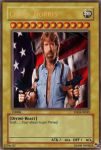 Chuck Norris: The card by halomerchant