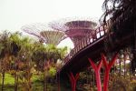 Garden By the Bay by xiaodevil359