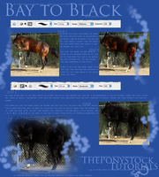 Bay To Black - Tutorial 1. by theponystock