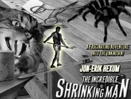 The Incredible Shrinking Man by Rivers-Art