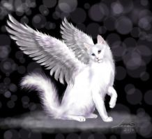 Angel Cat by legadema666