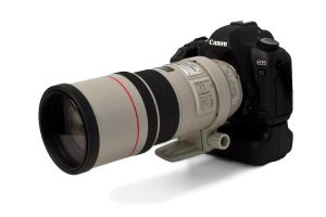 Canon 5D MkII 300mm f4L IS by jbkalla