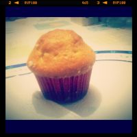 Mexican cupcake by lnp