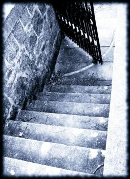 stairs to where by salixlucida