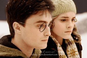 Harry and Hermione by xSixty-3ight