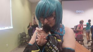 Miku and a Kitty by CosplayQueendom
