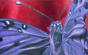 Purple Butterfly by Visitant