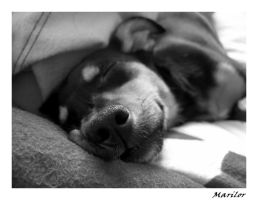 sleeping Fruzia by Marilor